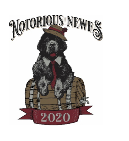 Notorious Newf